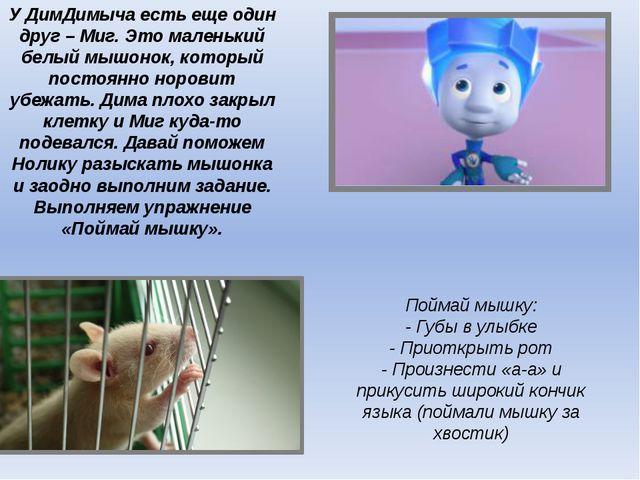 У ДимДимыча есть еще один друг – Миг. Это маленький белый мышонок, который по...