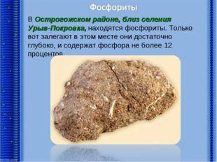 В Острогожском районе, близ селения Урыв-Покровка, находятся фосфориты. Тольк