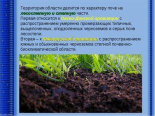 Территория области делится по характеру почв на лесостепную и степную части.