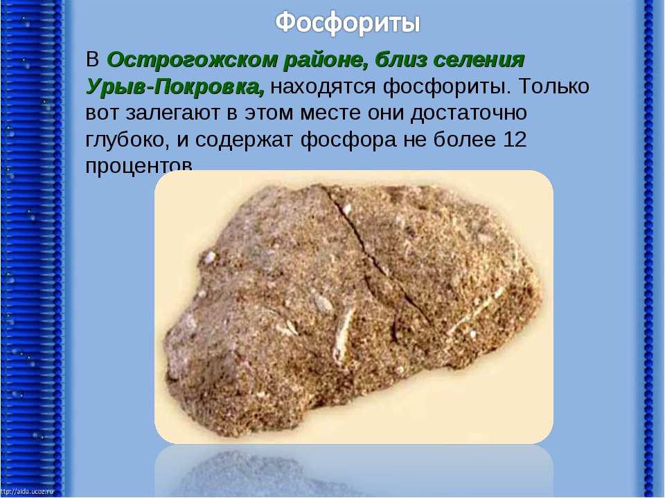 В Острогожском районе, близ селения Урыв-Покровка, находятся фосфориты. Тольк...