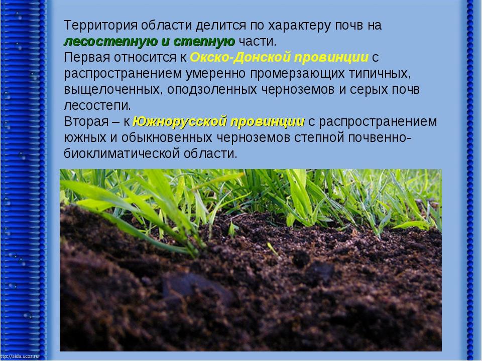 Территория области делится по характеру почв на лесостепную и степную части....