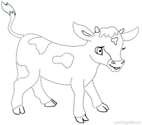 G:\3 г\домашние животные\4ae26eb1eed5832ab8b071cae4d3f4d5.jpg