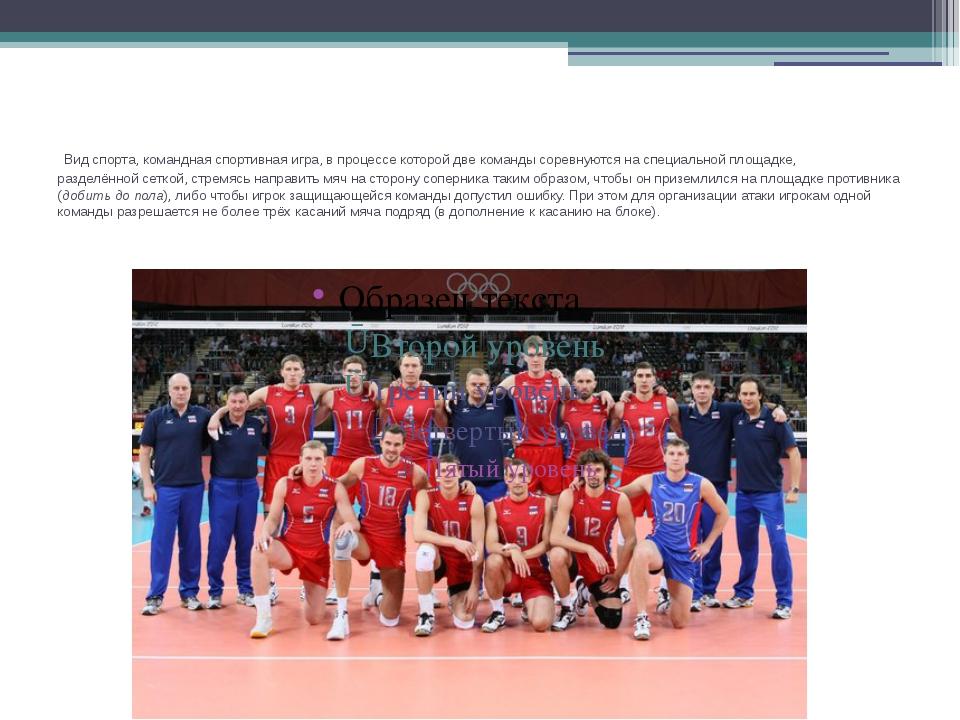 Видспорта, командная спортивная игра, в процессе которой две команды соревн...