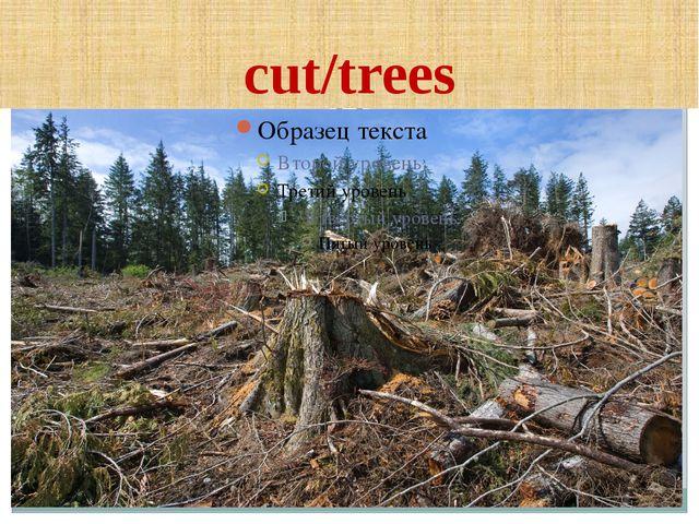 cut/trees