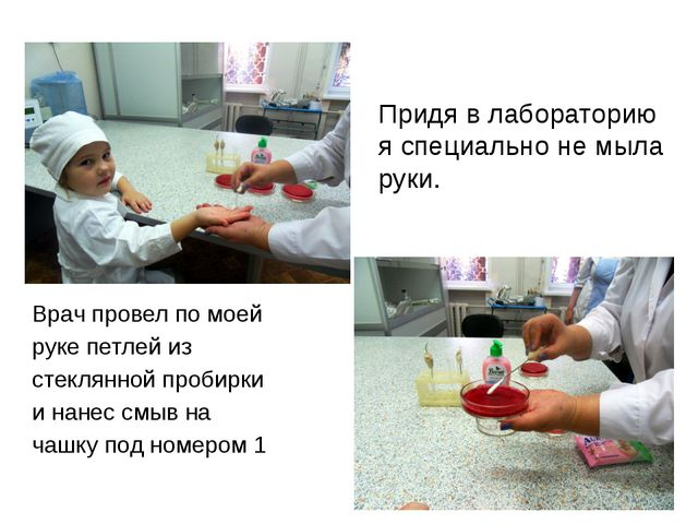 Придя в лабораторию я специально не мыла руки. Врач провел по моей руке петле...