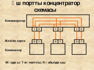 Үш портты концентратор схемасы
