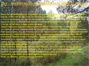 Лес - воспитатель и покровитель нашего народа Было бы неблагодарностью не наз