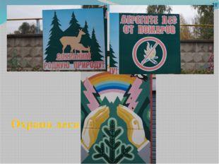 Охрана леса 21