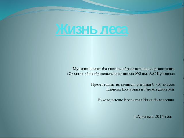 Муниципальная бюджетная образовательная организация «Средняя общеобразователь...