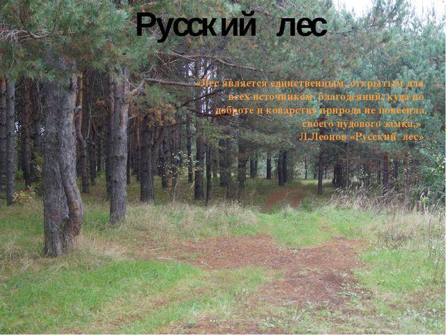 Русский лес «Лес является единственным, открытым для всех источником благодея...