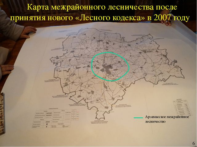 Карта межрайонного лесничества после принятия нового «Лесного кодекса» в 2007...
