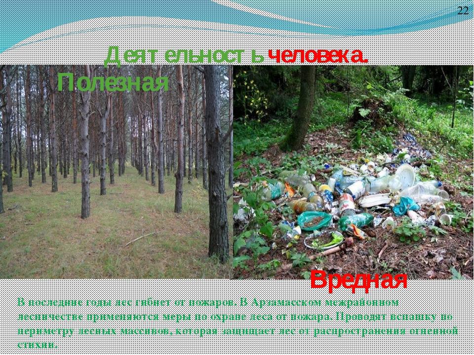 Деятельность человека. Полезная Вредная 22 В последние годы лес гибнет от пож...