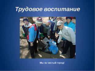 Трудовое воспитание Мы за чистый город!