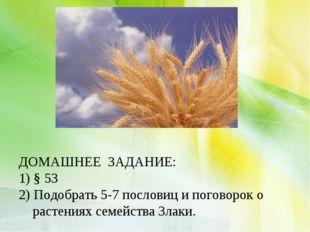 ДОМАШНЕЕ ЗАДАНИЕ: 1) § 53 2) Подобрать 5-7 пословиц и поговорок о растениях
