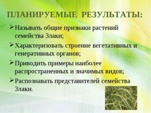 ПЛАНИРУЕМЫЕ РЕЗУЛЬТАТЫ: Называть общие признаки растений семейства Злаки; Хар
