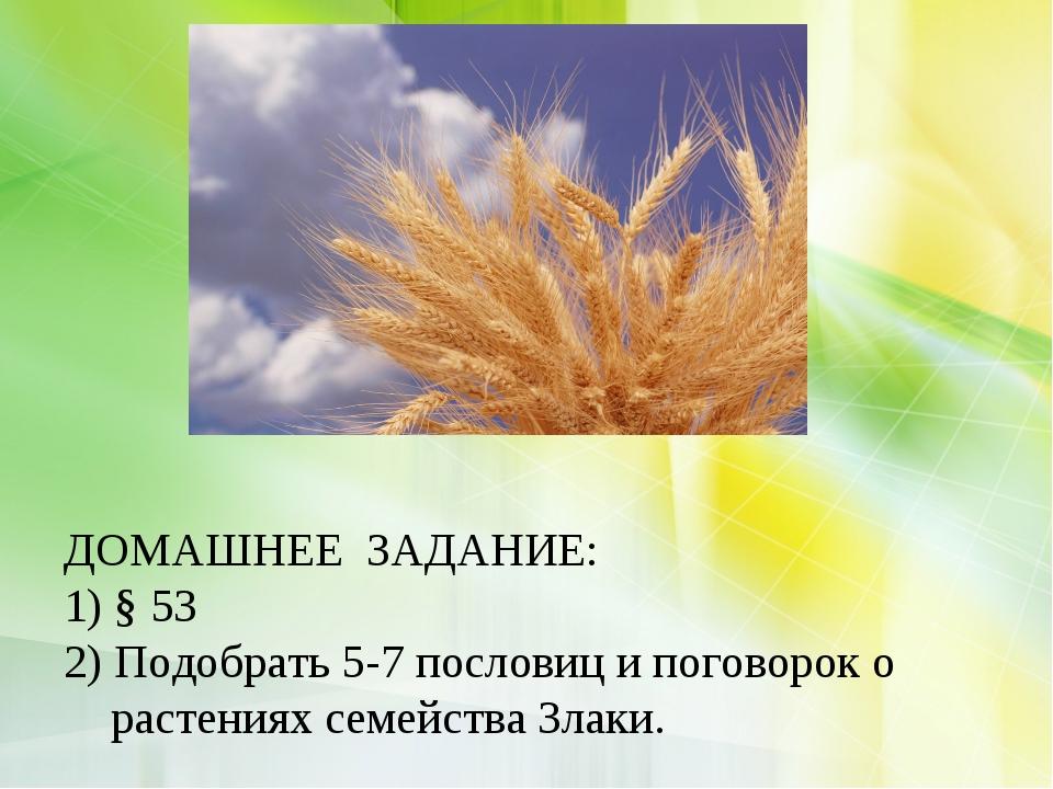 ДОМАШНЕЕ ЗАДАНИЕ: 1) § 53 2) Подобрать 5-7 пословиц и поговорок о растениях...