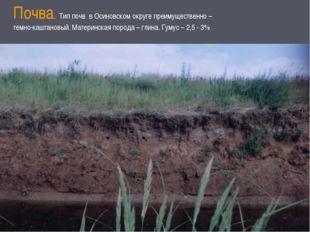 Почва. Тип почв в Осиновском округе преимущественно – темно-каштановый. Матер