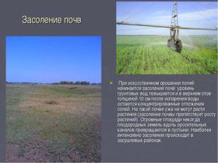 Засоление почв При искусственном орошении полей начинается засоление почв: ур