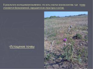 В результате исследования выявлено, что есть участки агроэкосистем, где почва
