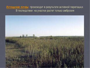 Истощение почвы происходит в результате активной перепашки. В последствии на