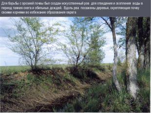 Для борьбы с эрозией почвы был создан искусственный ров для отведения и скопл