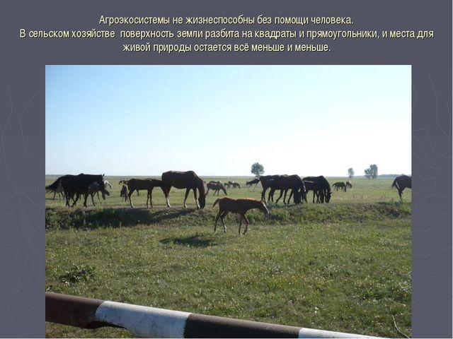 Агроэкосистемы не жизнеспособны без помощи человека. В сельском хозяйстве пов...