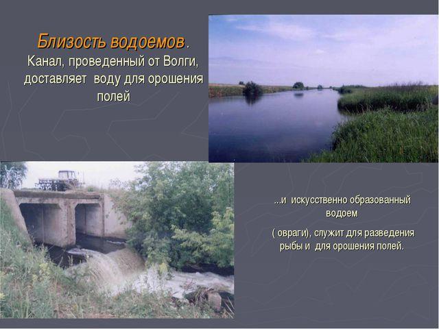 Близость водоемов . Канал, проведенный от Волги, доставляет воду для орошения...