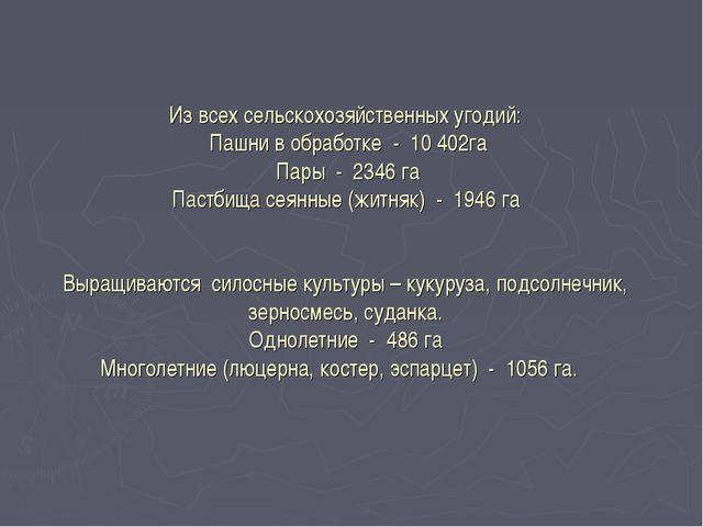 Из всех сельскохозяйственных угодий: Пашни в обработке - 10 402га Пары - 2346...