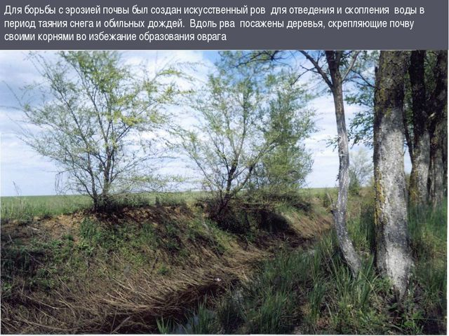 Для борьбы с эрозией почвы был создан искусственный ров для отведения и скопл...
