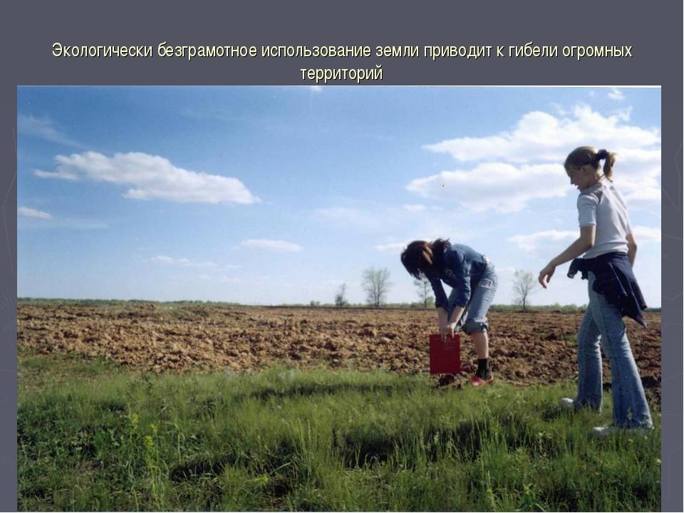 Экологически безграмотное использование земли приводит к гибели огромных терр...