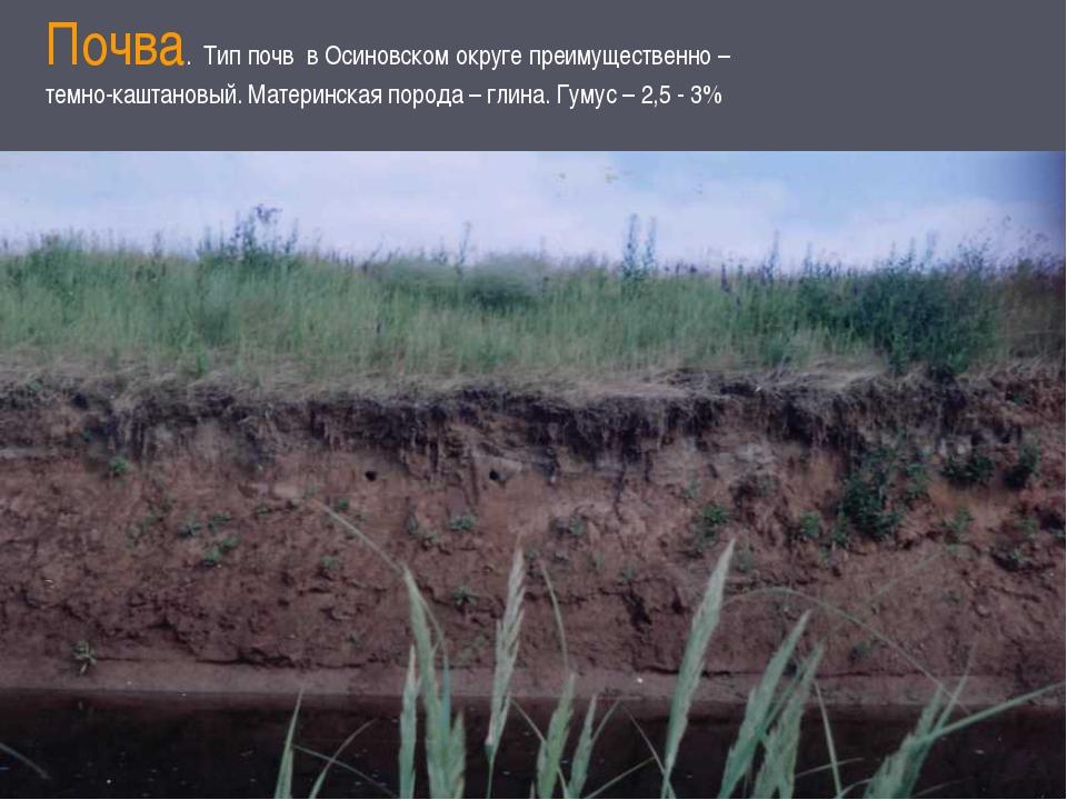 Почва. Тип почв в Осиновском округе преимущественно – темно-каштановый. Матер...
