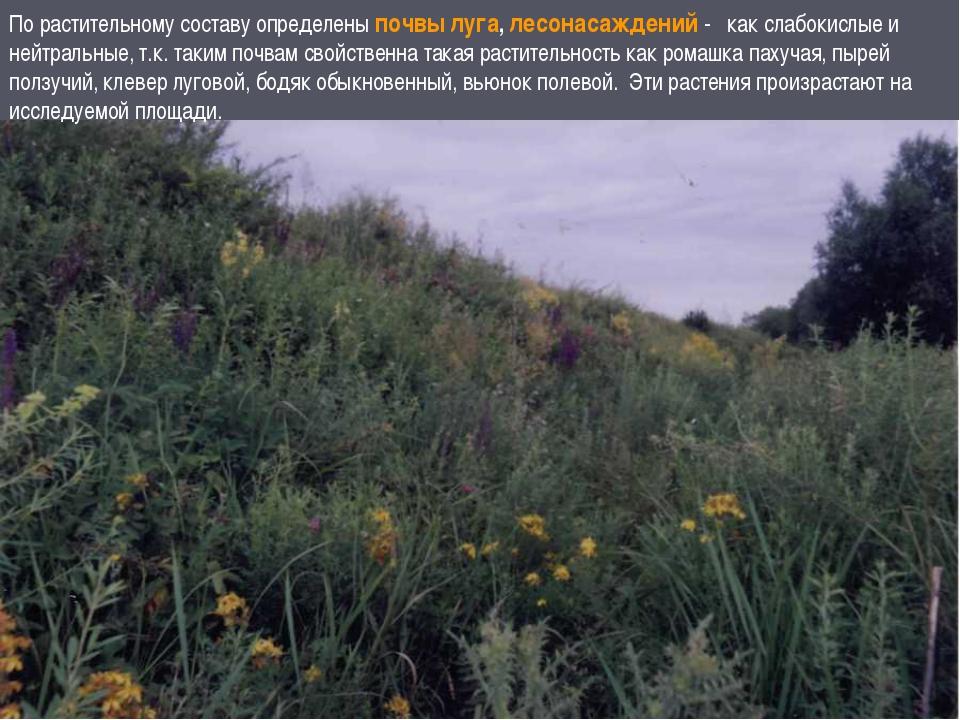 По растительному составу определены почвы луга, лесонасаждений - как слабокис...