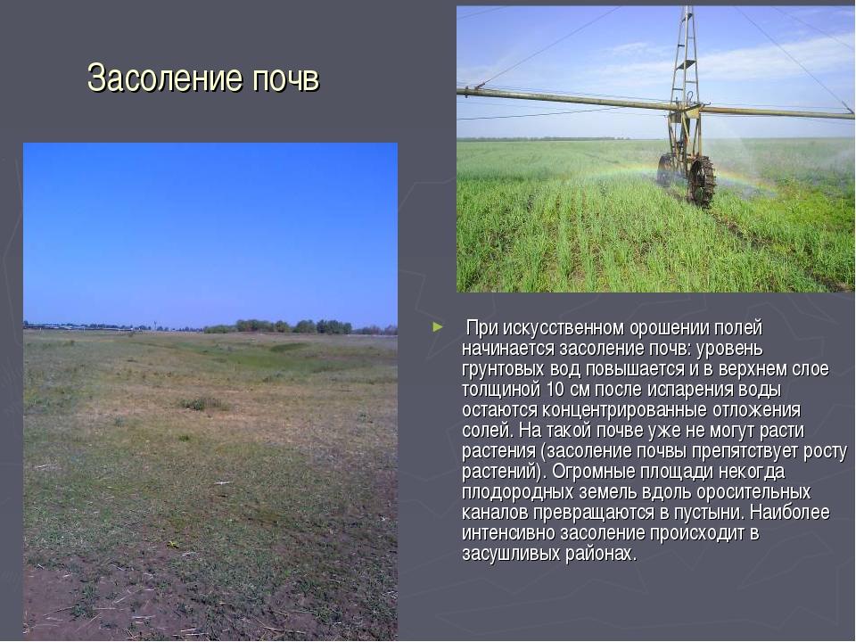 Засоление почв При искусственном орошении полей начинается засоление почв: ур...