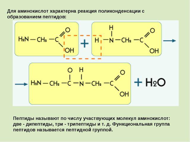 Для аминокислот характерна реакция поликонденсации с образованием пептидов: П...