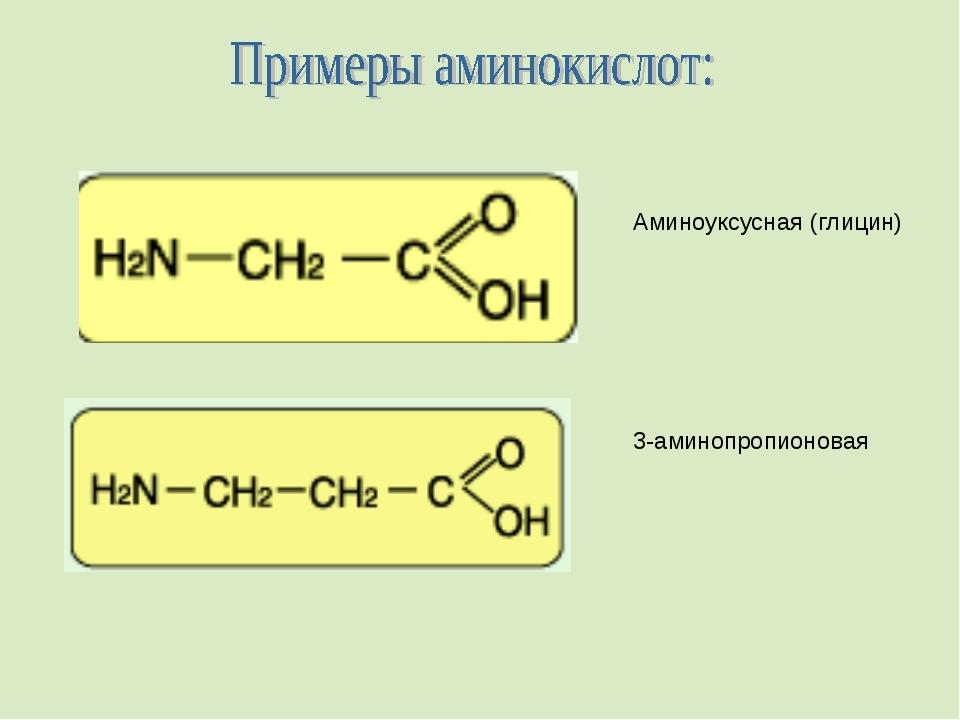 Аминоуксусная (глицин) 3-аминопропионовая