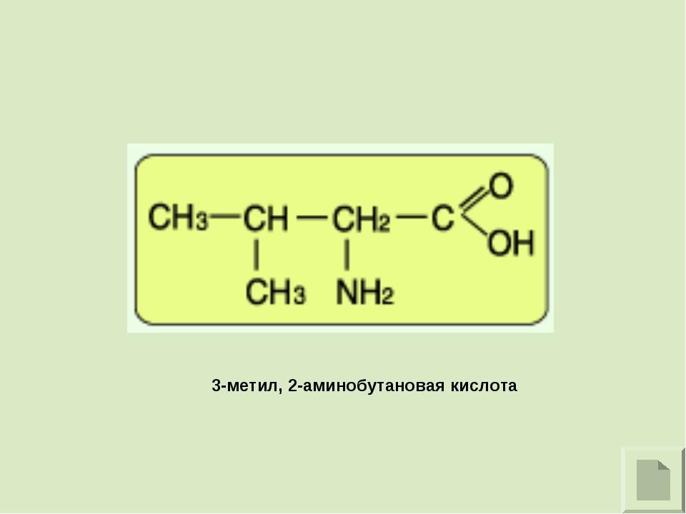 3-метил, 2-аминобутановая кислота