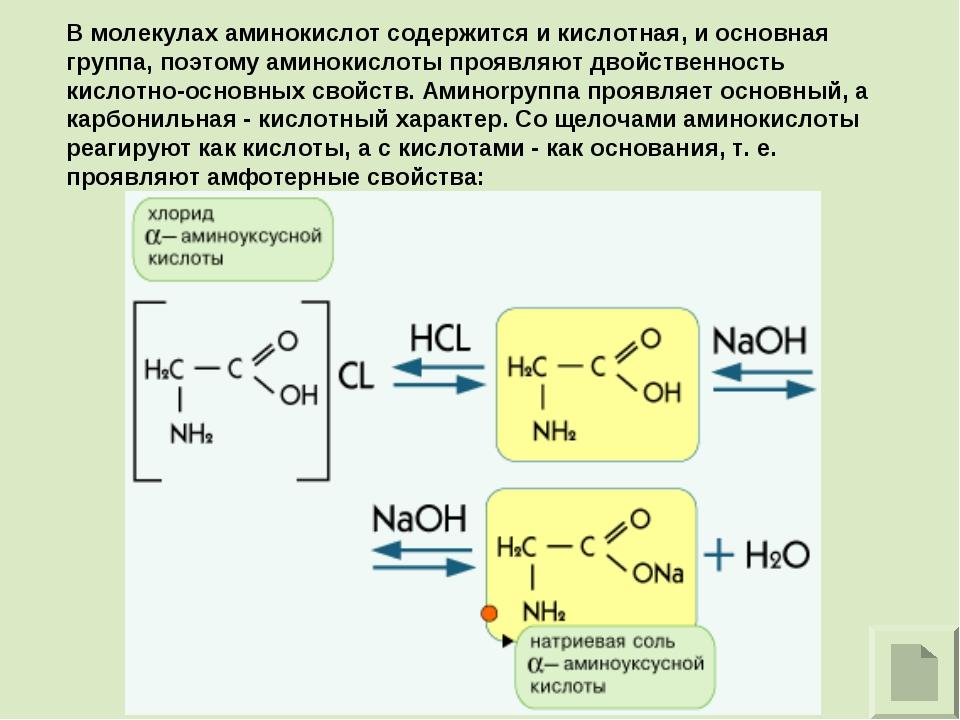 В молекулах аминокислот содержится и кислотная, и основная группа, поэтому ам...