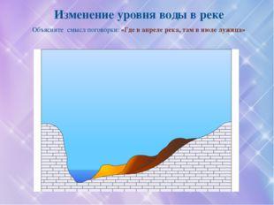 Россия занимает второе место в мире (на первом – Бразилия) по величине суммар
