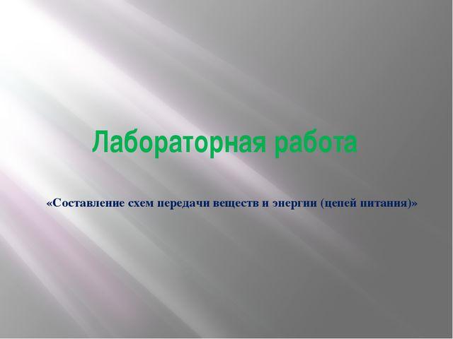 Лабораторная работа «Составление схем передачи веществ и энергии (цепей питан...