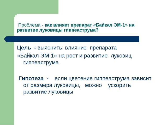 Проблема - как влияет препарат «Байкал ЭМ-1» на развитие луковицы гиппеастру...