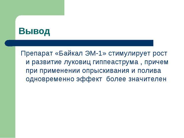 Вывод Препарат «Байкал ЭМ-1» стимулирует рост и развитие луковиц гиппеаструма...