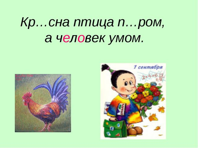 Кр…сна птица п…ром, а человек умом.