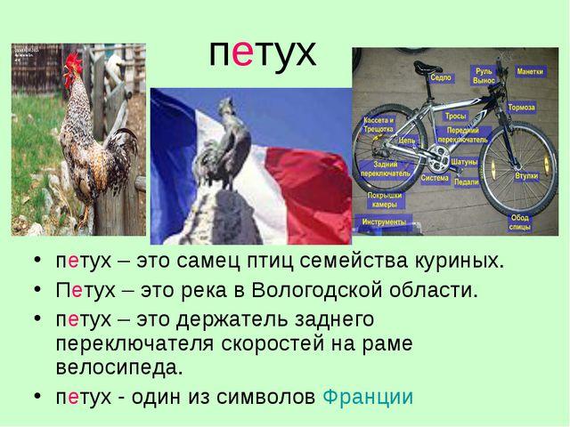 петух петух – это самец птиц семейства куриных. Петух – это река в Вологодско...