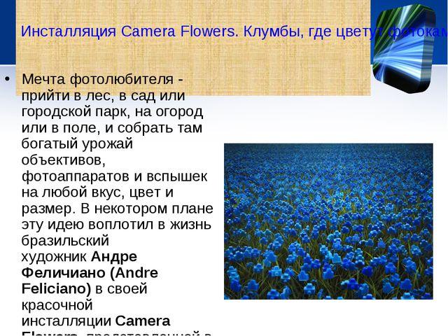 Мечта фотолюбителя - прийти в лес, в сад или городской парк, на огород или в...