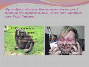 «Произойти от обезьяны был человеку путь не мал. В обратный путь пустился пья