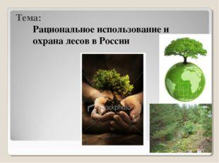 Тема: Рациональное использование и охрана лесов в России