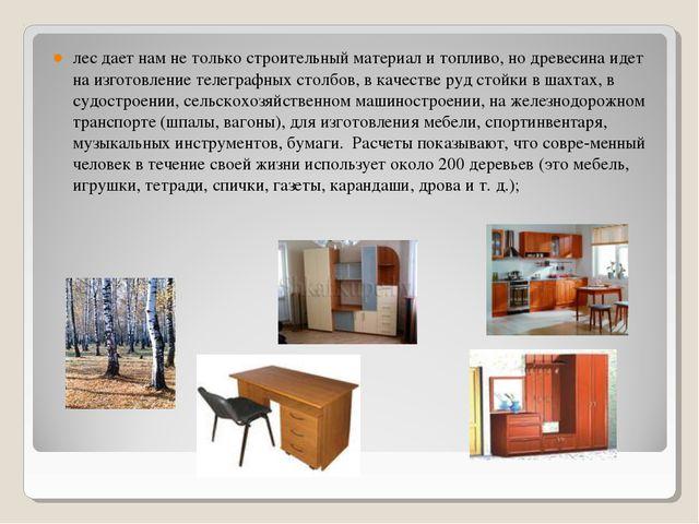 лес дает нам не только строительный материал и топливо, но древесина идет на...