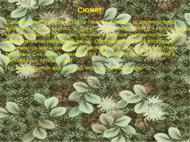 Сюжет Однажды, мистер Крот, устав от тёмного и сырого подземного мира, выбира...