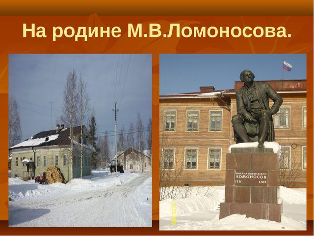 На родине М.В.Ломоносова.