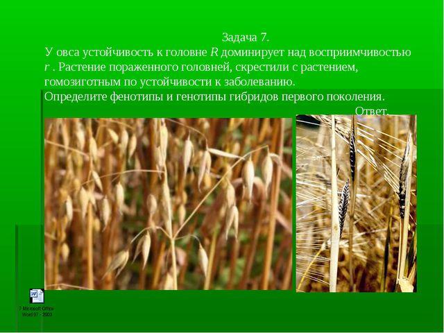 Задача 7. У овса устойчивость к головне R доминирует над восприимчивостью...
